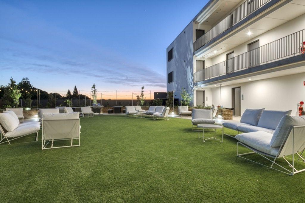 Dash Living St Peters Sydney - outdoor garden (3)