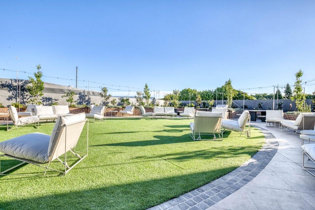 Dash Living St Peters Sydney - outdoor garden (2)